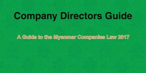 COMPANY DIRECTORS GUIDE