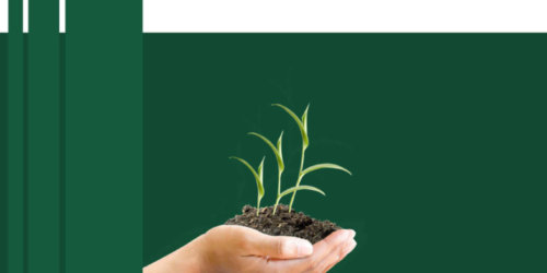 Shan State Investment Promotion Plan-Book